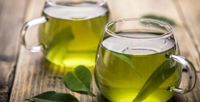 té verde propiedades